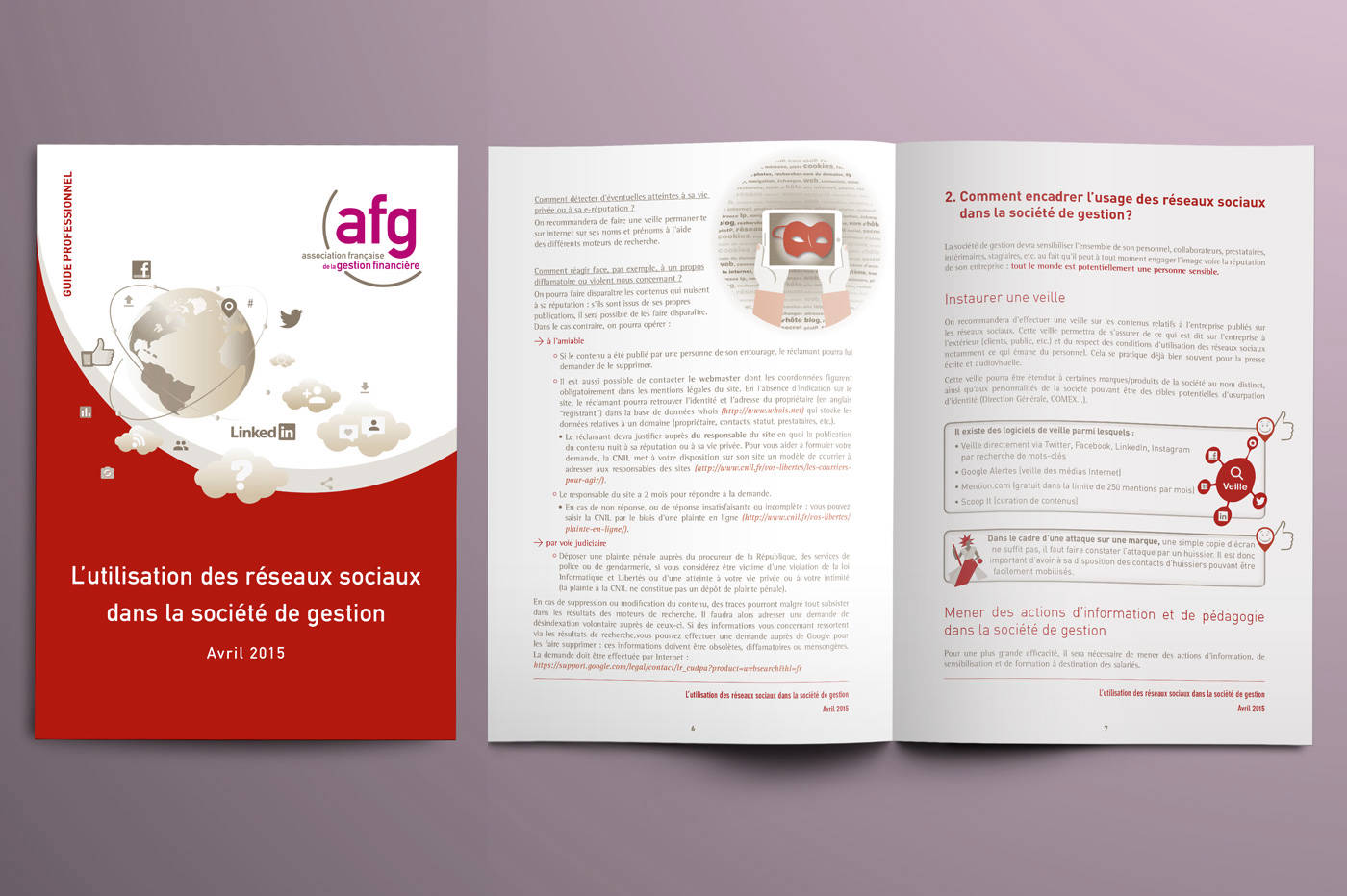 Guide professionnel AFG 2015